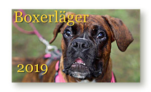 puffLager2019