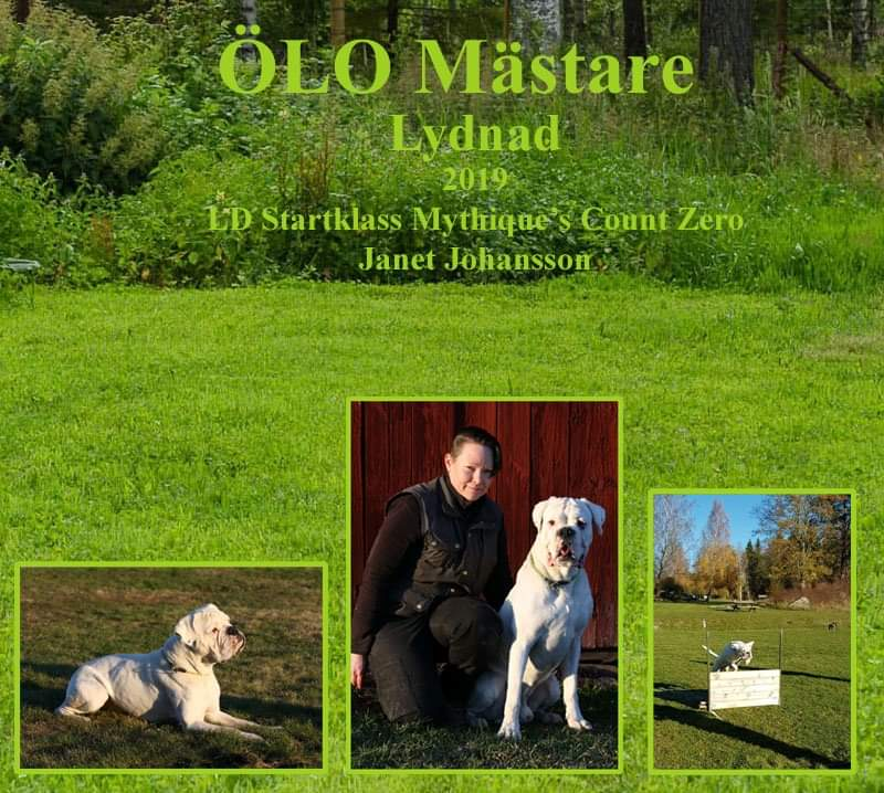 oloLydnad2019Janet